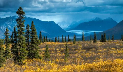 Ken Sparks-Alaska